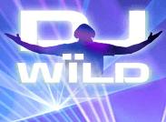 Dj Wild Slot Logo